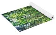 Stream Flowing Through A Forest, Usa Yoga Mat