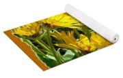 Wild Okanagan Sunflowers Yoga Mat