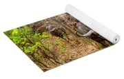 Herd Of Cape Buffaloes Syncerus Caffer Yoga Mat