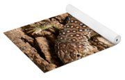 Ocellated Lizard Timon Lepidus Yoga Mat