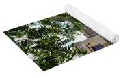 Peek Through The Tree's Of Old City Jail Yoga Mat
