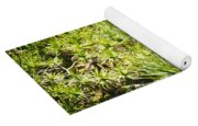 Pandanus Palm Tree Yoga Mat