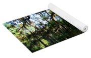Walking Path Yoga Mat