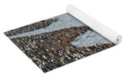 King Penguins Yoga Mat