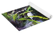 A Walk In The Glades Yoga Mat
