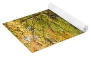 A Walk In The Woods Yoga Mat