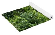 African Elephant Eating In The Shrubs Yoga Mat