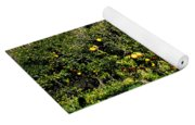 Almanzora Mountain Lemons Winther Spain Yoga Mat