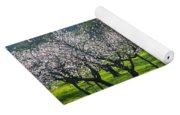 Almond Trees In Bloom Yoga Mat