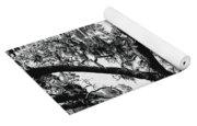 Amazing Oak Tree Yoga Mat