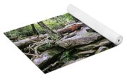 ...and The Creek Don't Rise Yoga Mat