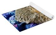 Cat Nap Yoga Mat
