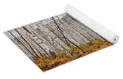 Aspen And Ferns Yoga Mat