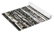 Aspen Tree Trunks Yoga Mat