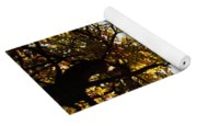 Autumn Chestnut Canopy   Yoga Mat