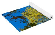 Autumn Colors Against The Sky Yoga Mat
