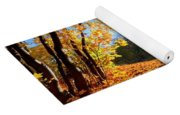 Autumn Fall Landscape In Forest Yoga Mat