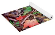 Autumn Leaves In Creek Bed Yoga Mat