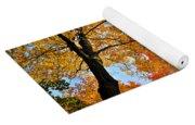Autumn Maple Trees Yoga Mat