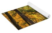Autumn Pines Square Yoga Mat