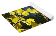 Backlit Leaves Of Autumn Yoga Mat