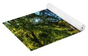 Barn With Out-sheds Brunner Family Farm Yoga Mat