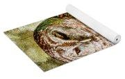 Barred Owl On Moss Yoga Mat