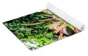 Beautiful Flowers In Basket Yoga Mat