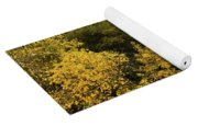 Big Thompson River 2 Yoga Mat