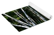 Birch Grove In The Sunlight Yoga Mat