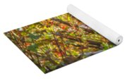Black Bear Autumn Yoga Mat