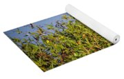 Black-bellied Whistling Ducks Yoga Mat