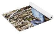 Blue Heron Lacassine Yoga Mat