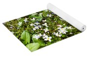 Bluets In Stereo Yoga Mat