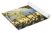 Bombacaceae - Floss Silk Tree - Chorisia Speciosa Hawaii Yoga Mat