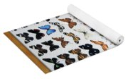 Butterfly Collection Yoga Mat