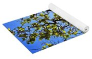 Catalpa Tree Yoga Mat