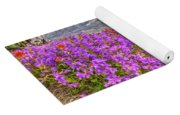 Color From Chaos - Mount St. Helens Yoga Mat