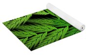 Colorful Feather Fern - Abstract - Fractal Art - Square - 1 Tl Yoga Mat