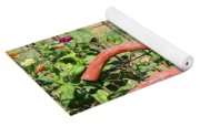 Colorful Fence Row Yoga Mat