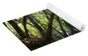 Corkscrew Swamp 3 Yoga Mat
