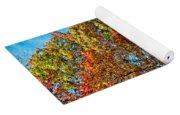 Country Curves And Vultures Yoga Mat