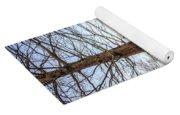 Cypress Reflections Yoga Mat