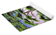 Cypress Trees-wakulla River Florida Yoga Mat