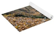 Deciduous Forest With Ravines Yoga Mat