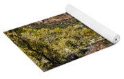 Emeral Pools Trail - Zion Yoga Mat