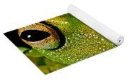 Eye-ringed Bushfrog Yoga Mat