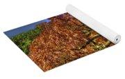 Fall Color At Biltmore Yoga Mat
