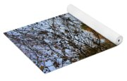 Fall Comes To The Hollow Yoga Mat