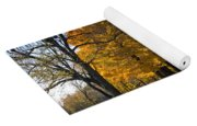 Fall Rural Country Gravel Road Yoga Mat